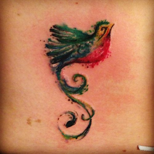 Crystal says awesome mix of whimsy and stylized with for Quetzal bird tattoo