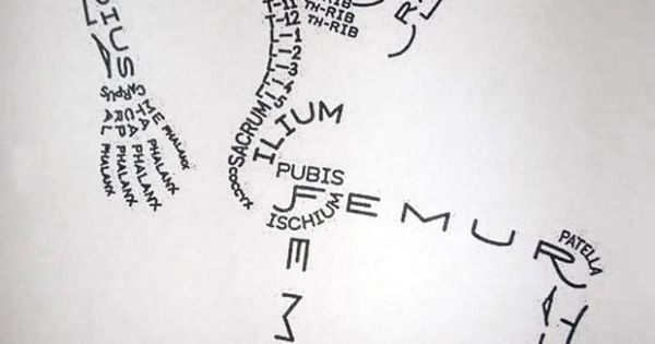 Human bone names creative infographic drawing | Street art | Pinterest | Creative, Physiology and Anatomy
