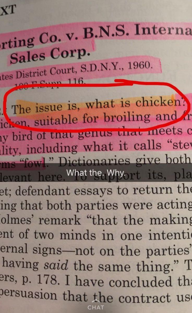 Snapchats Of A Law Student Brazenandbrunette Com Law School Humor Law School Quotes Law School Memes