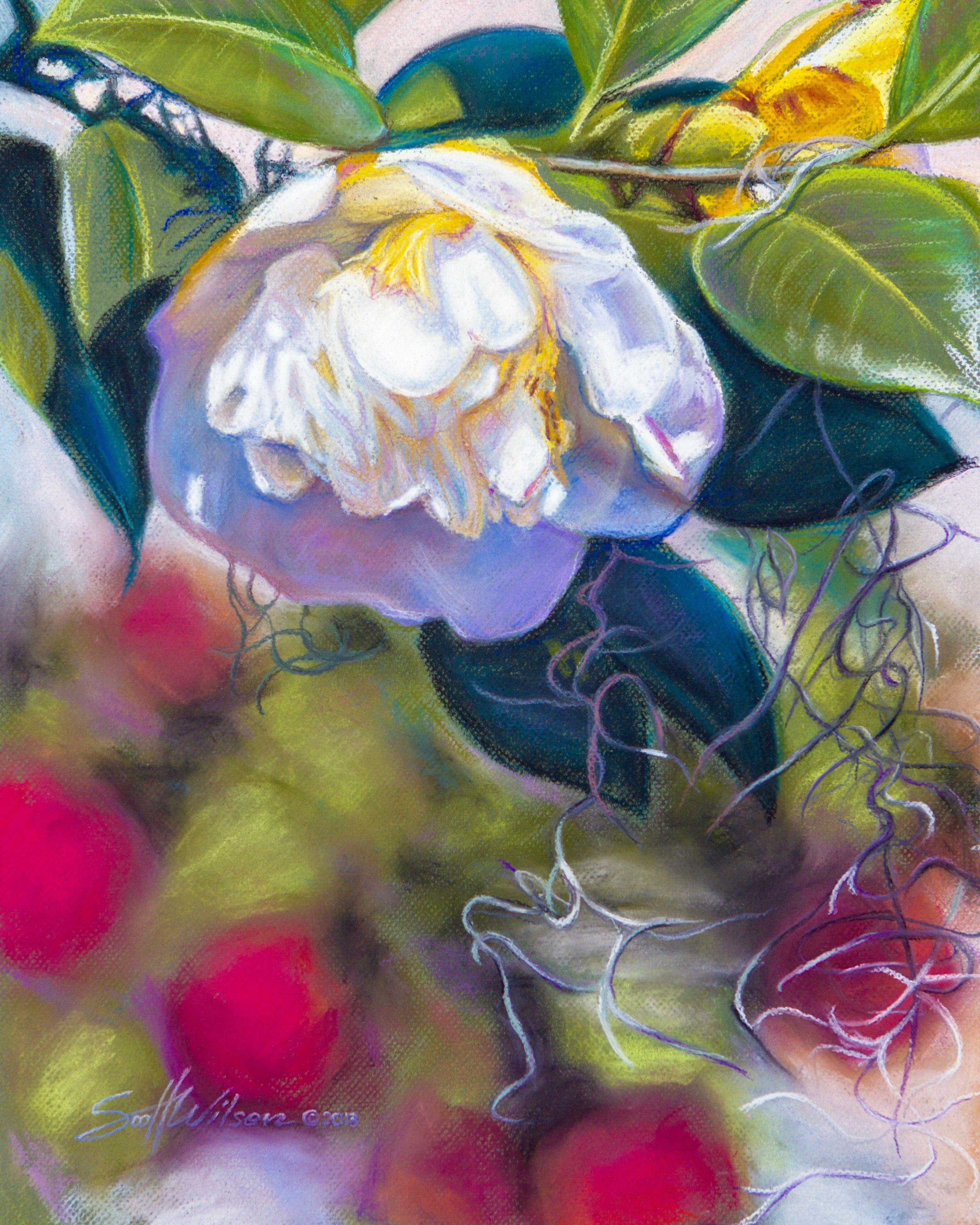 Pastel Artist Scott Wilson