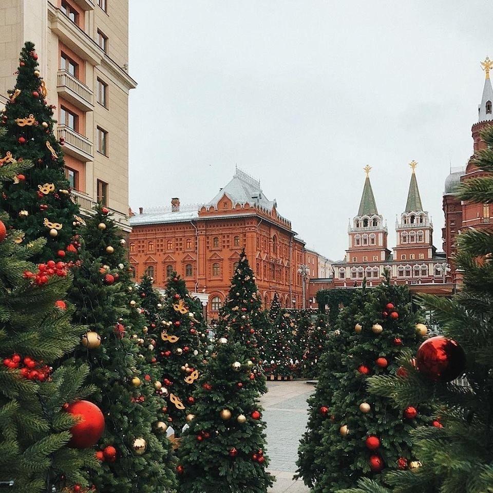новогодние елки в центре москвы снегири фото вспомнилось, всё было