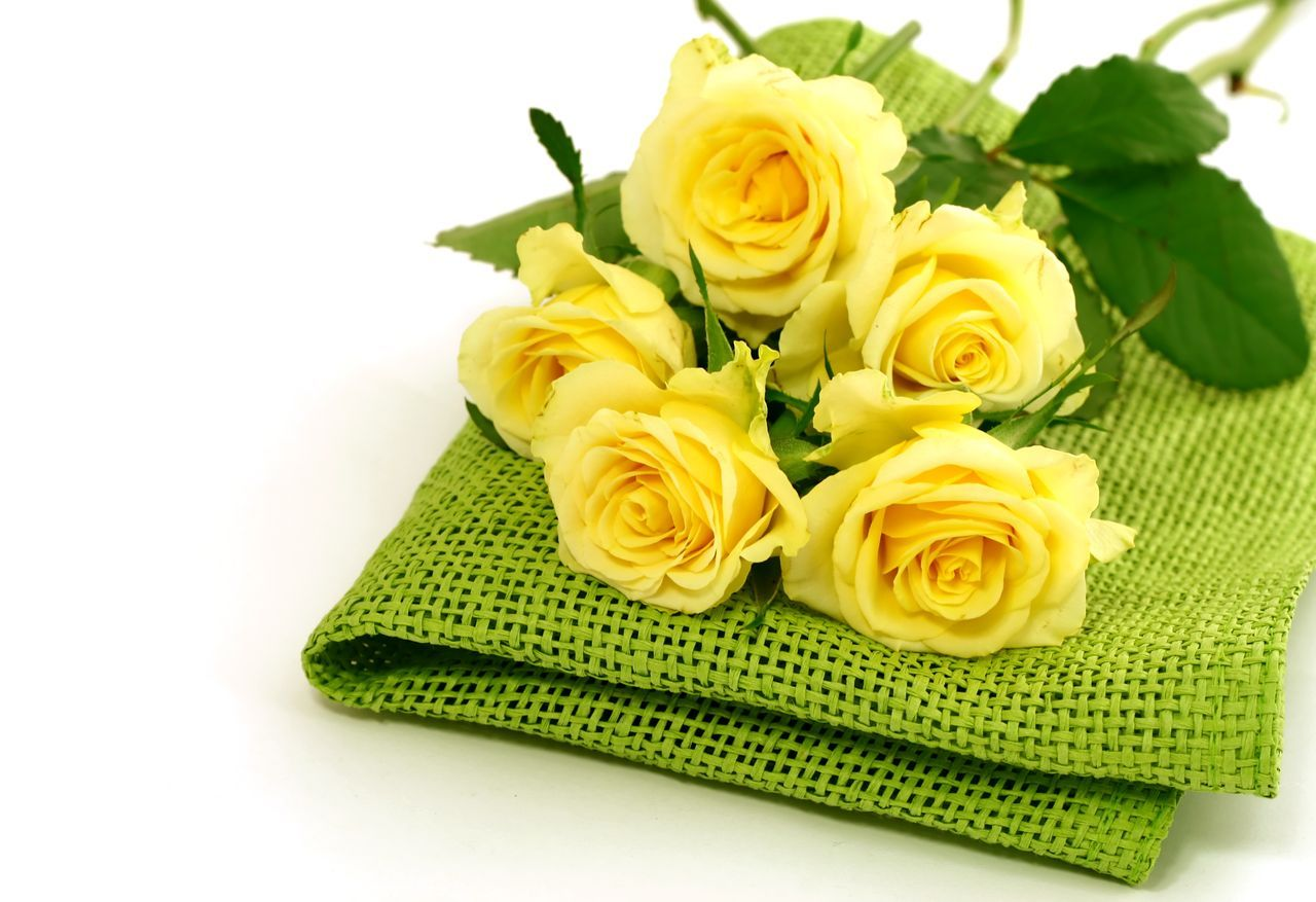 Yellow Roses Flores Pinterest Yellow Roses And Flowers