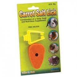 Ware Carrot Salt Small Pet Chew with Holder $0.80
