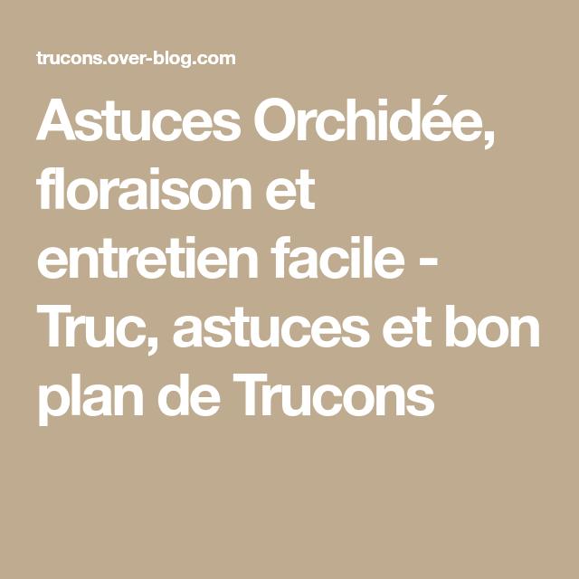 Astuces Orchidée, floraison et entretien facile - Truc, astuces et bon plan de Trucons
