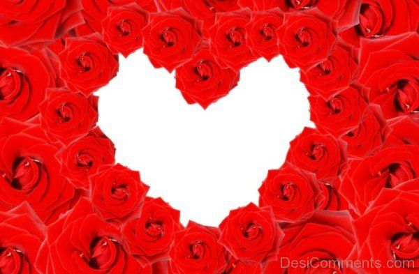Draw Heart With Roses-tvw235desi56