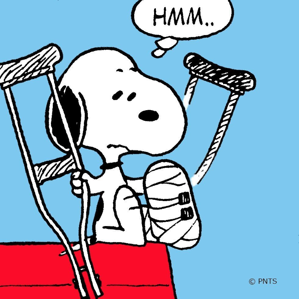 Met Life Quotes 2: Snoopy W/broken Foot - Peanuts Gang