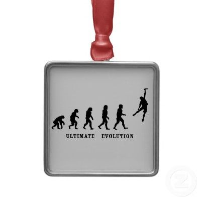 317c031ff3318 Pin by Raiza Moss on Products I Love | Ultimate frisbee, Ornaments ...
