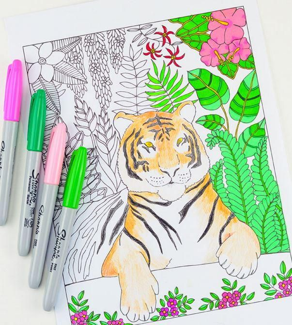 Love this tiger printable coloring sheet
