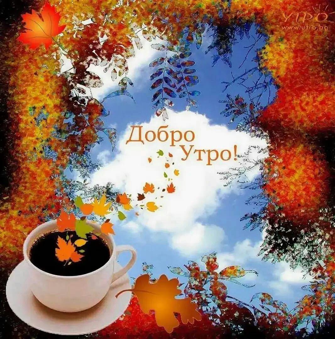 Смешные картинки, открытки с добрым утром осени красивые