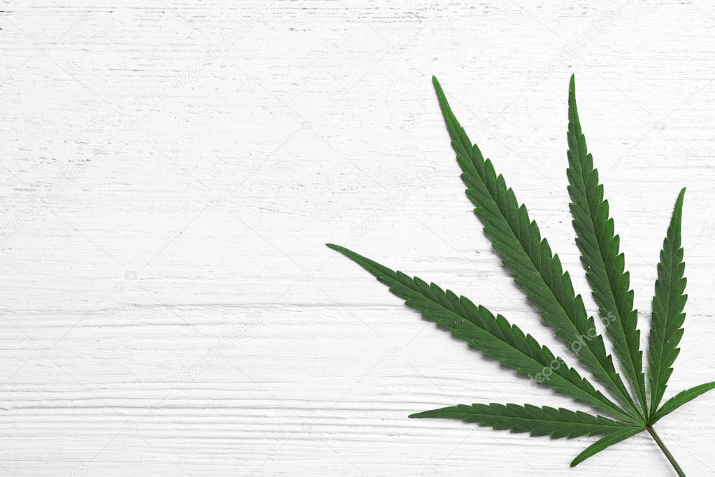 Leaf Of Medical Hemp On White Wooden Background Top View Space For Text Wooden Background Background Top View
