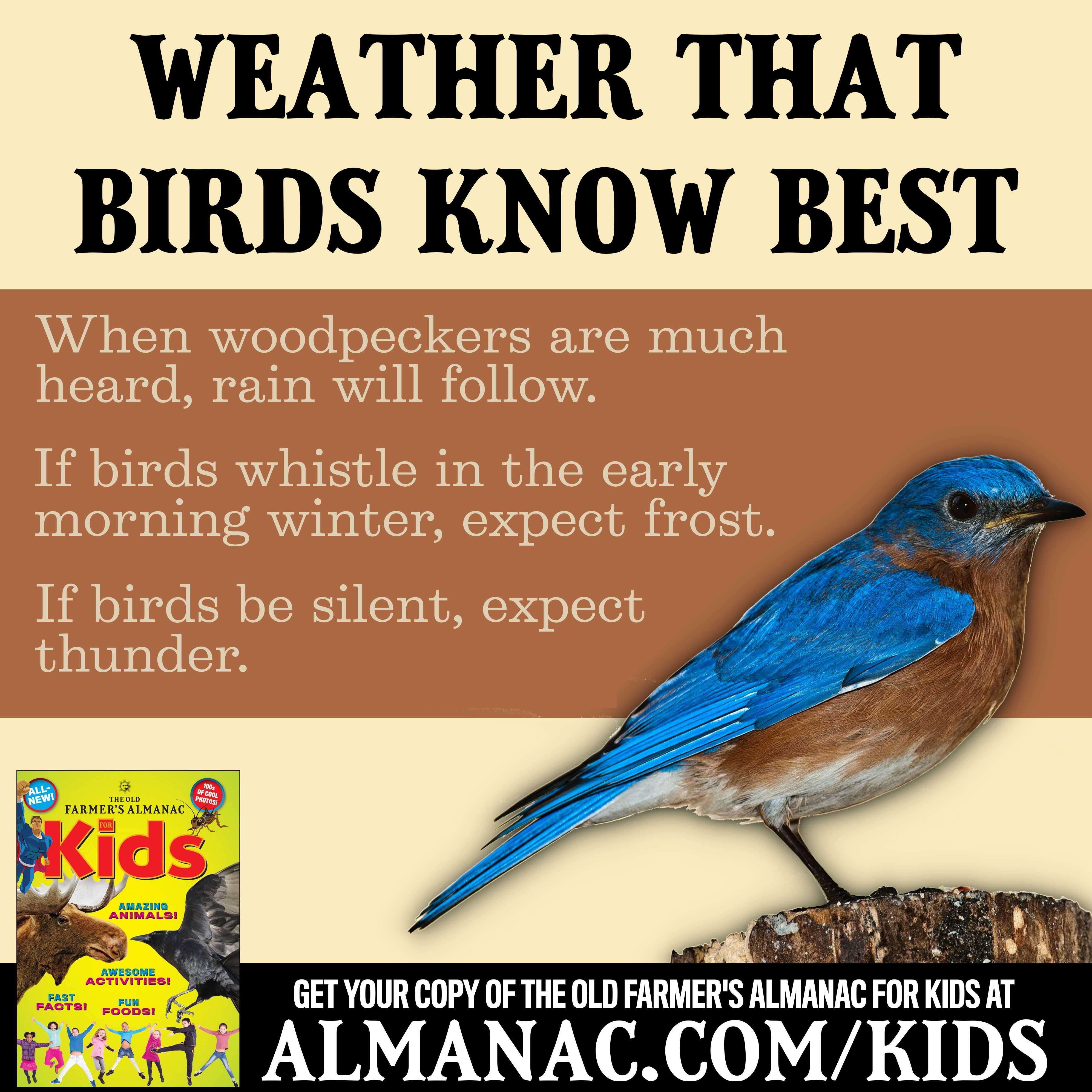 Pin by Old Farmer\'s Almanac on Old Farmer\'s Almanac for Kids ...