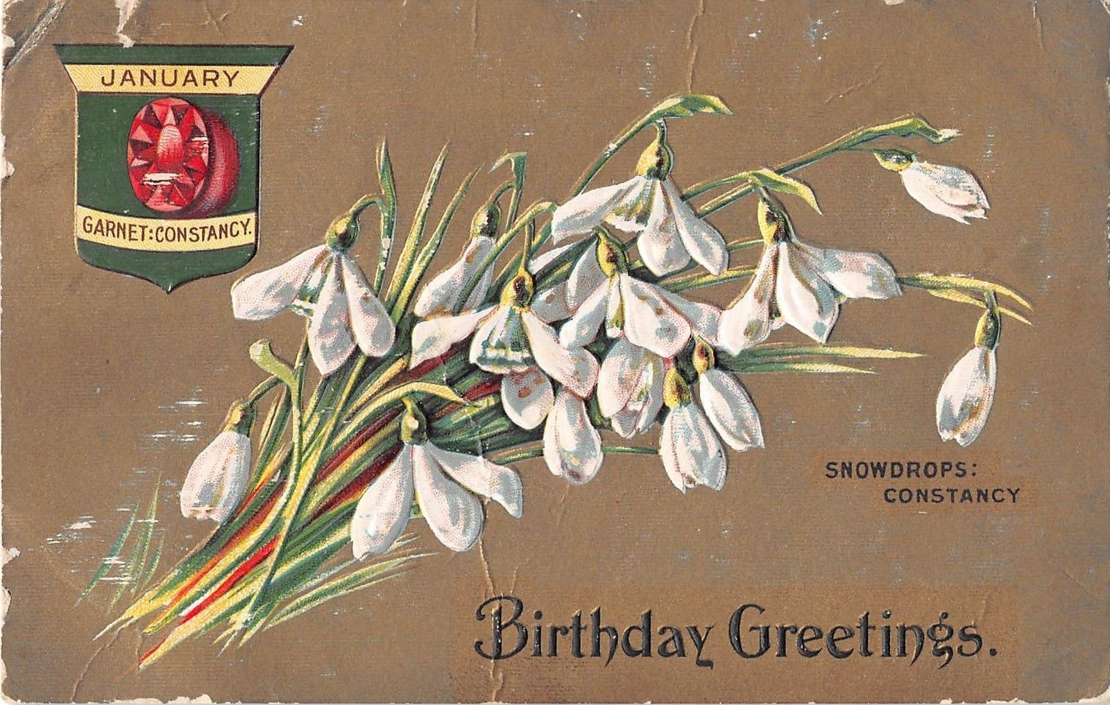 Old Gem Flower Birthday Postcard For January With Garnet