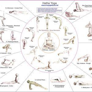 free exercises chart unique yoga chart  beginner yoga