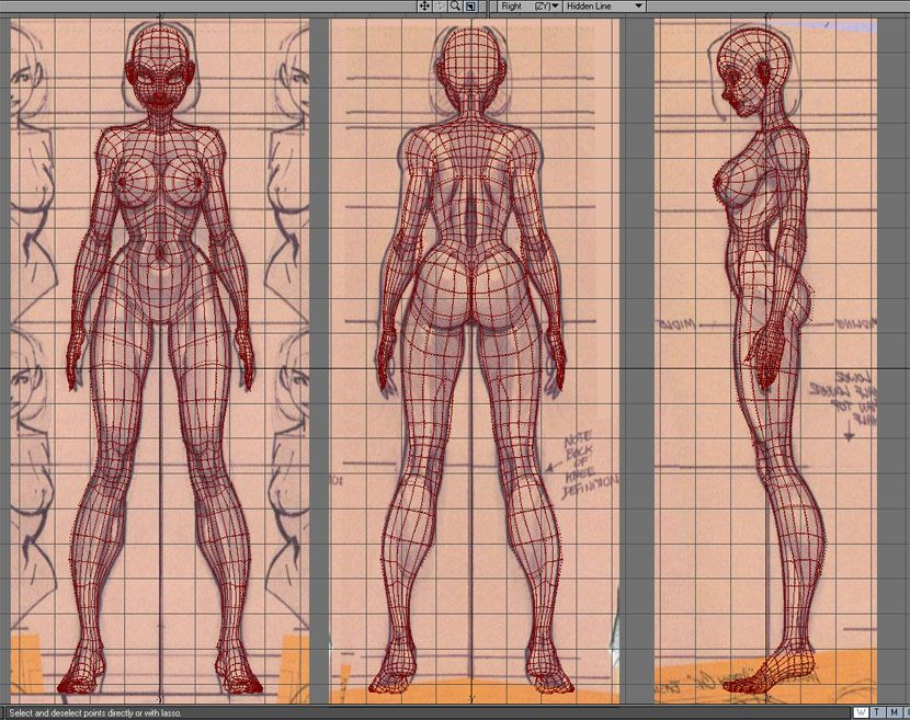 Female character 3D wireframe front, back, side | 3D | Pinterest ...