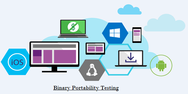 Image result for Portability testing