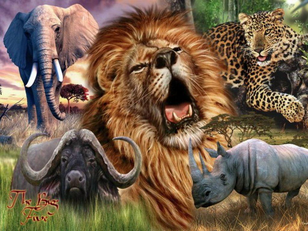 African Safari. Africa's Big 5. Olifanten, Dieren