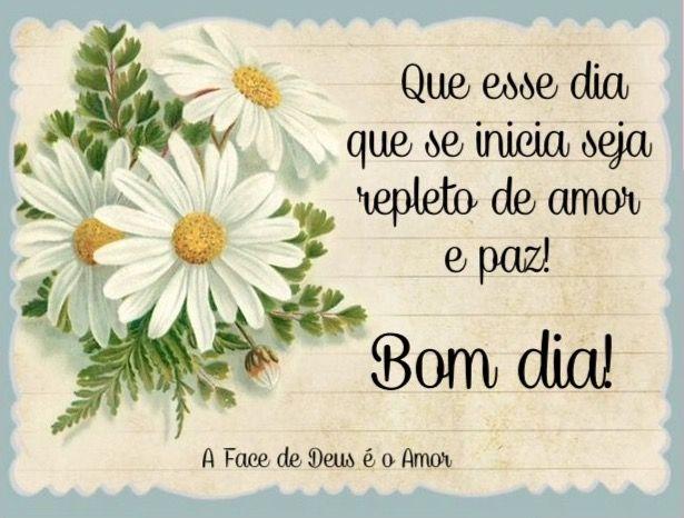 Bomdia Paz Mensagem Com Imagens Mensagens De Bom Dia