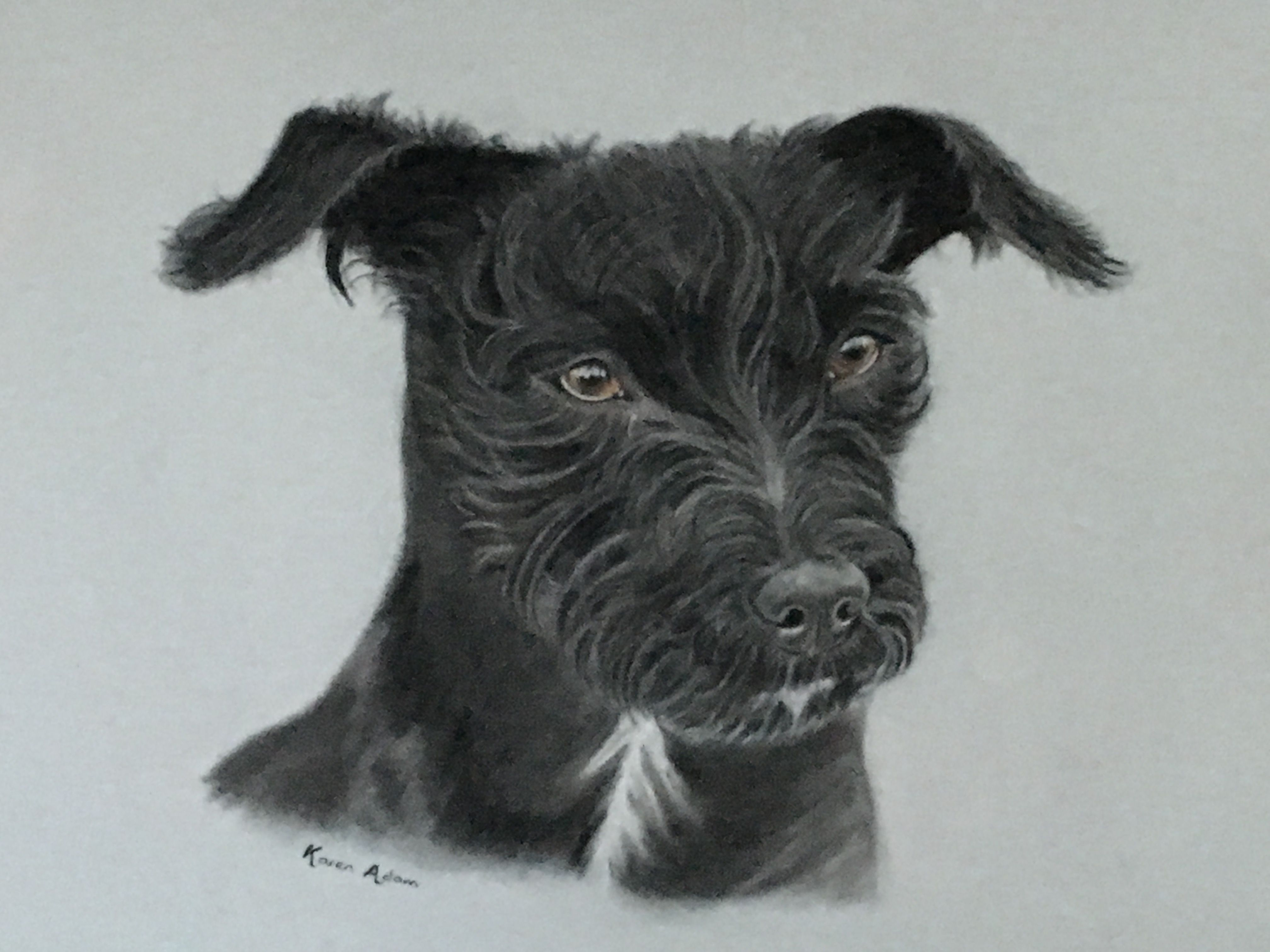 Pin by Lim Soo Peng on Karen adam pet portraits Dog