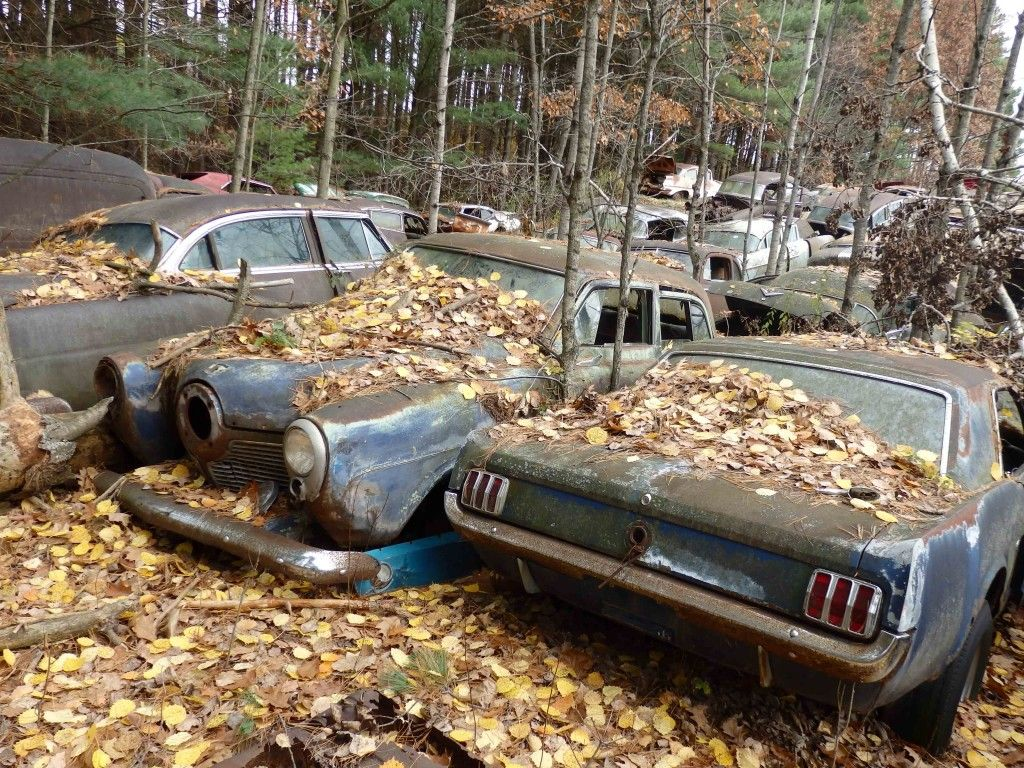 Hillard Auto Salvage | Barn Finds,Junk Yard Cars etc. | Pinterest ...