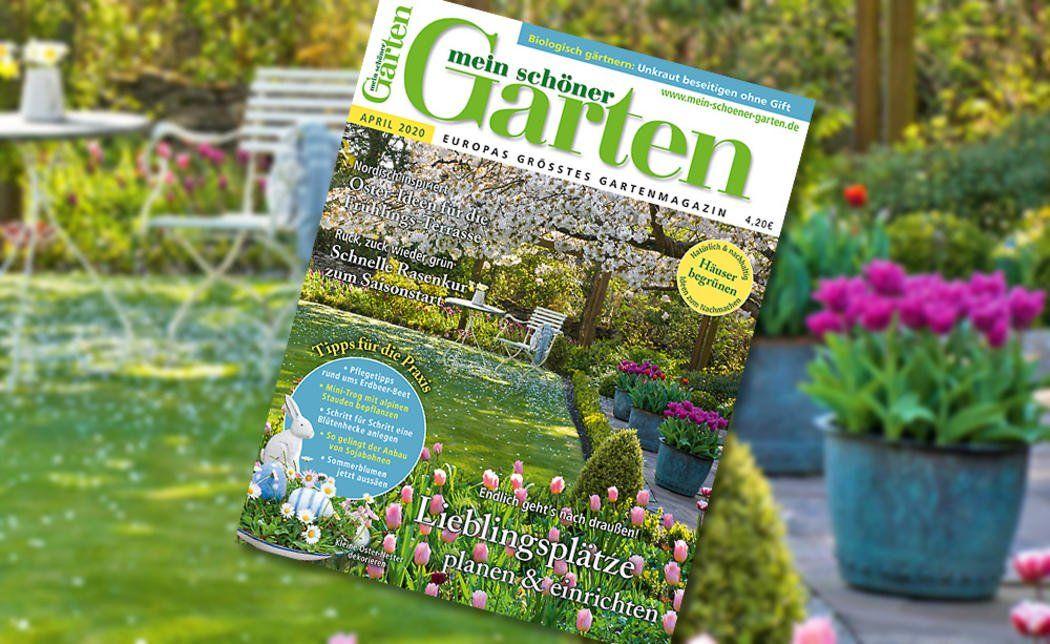 Pin Auf Gartenfreunde