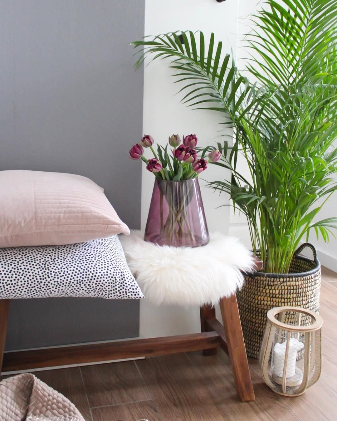 Ein Kuscheliges Fell Sorgt Nicht Nur Auf Dem Sofa Oder Sessel Fur
