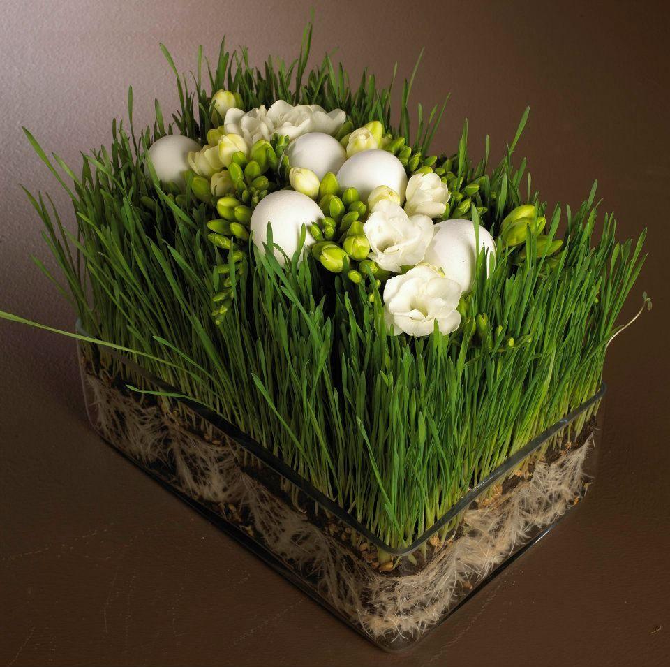 paques dans l 39 herbe floral pinterest easter flowers. Black Bedroom Furniture Sets. Home Design Ideas