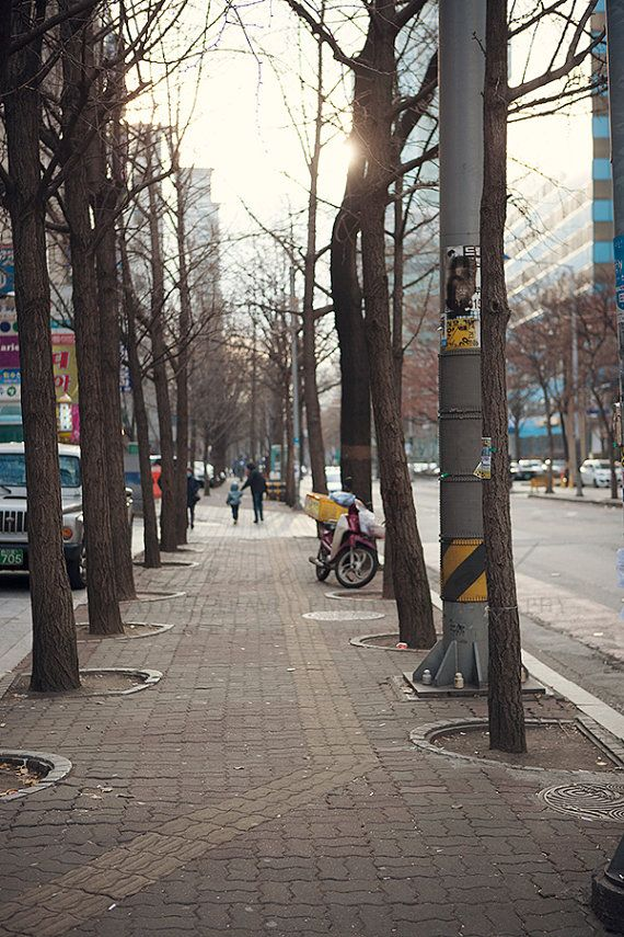 December in Seoul - Photographic Print - Asia, South, Korea, Street, Photography, art, Yeouido, wall, hanging, decor, winter, city, on Etsy, $15.00