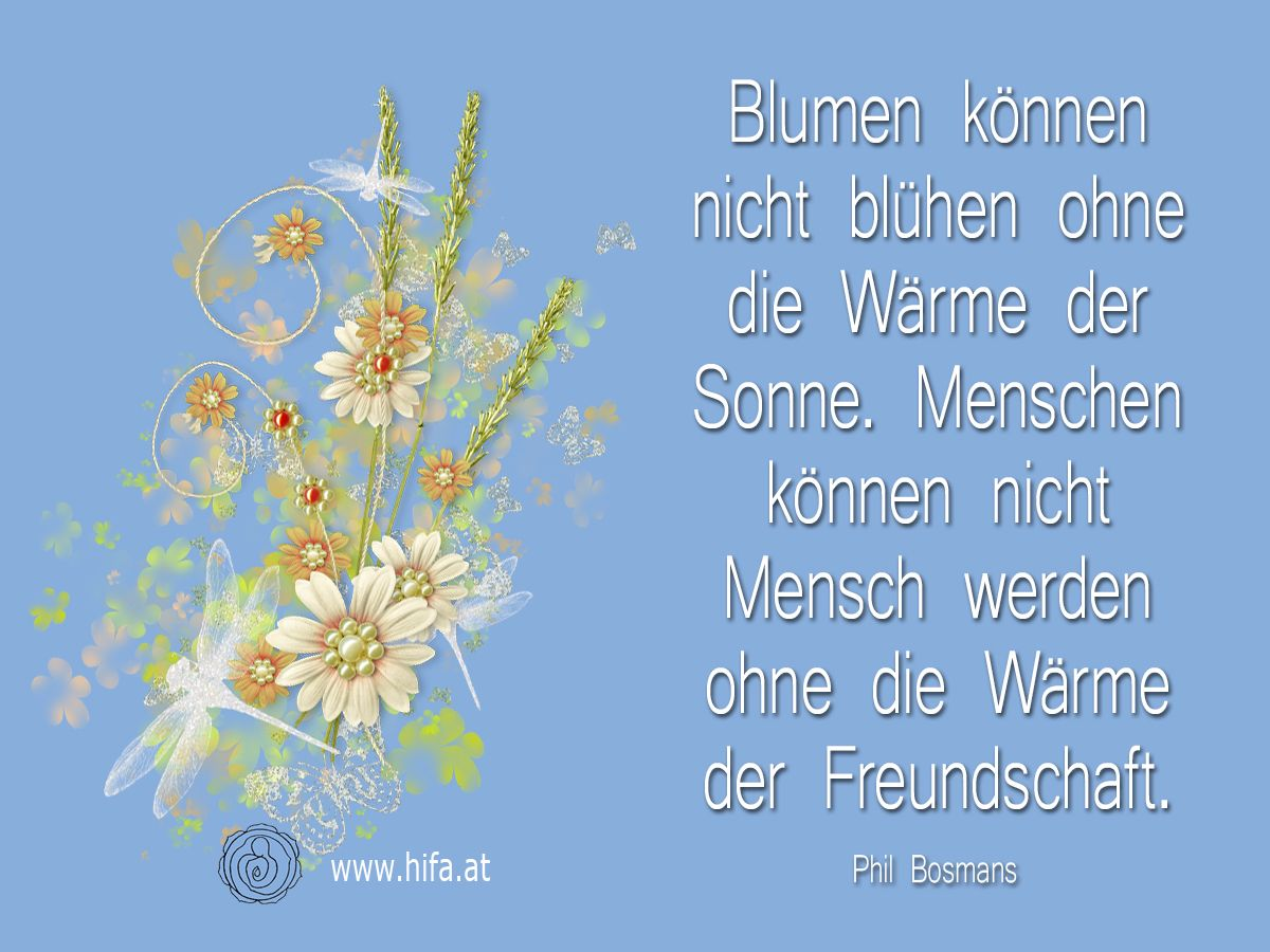 Blumen Konnen Nicht Bluhen Ohne Die Warme Der Sonne Menschen Konnen