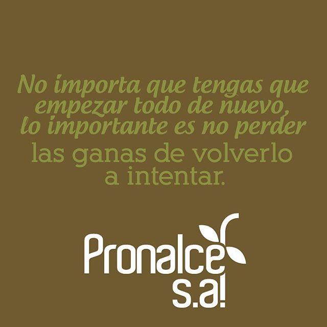 Las personas más fuertes son aquellas que no se rinden frente a las dificultades. Haz de este sábado el mejor del año. #FraseDelDíaPronalce www.pronalce.com