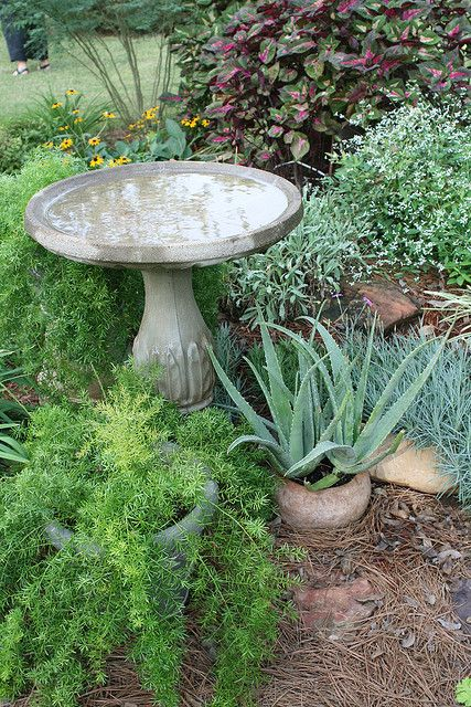 Bird Bath Arrangement Small Gardens Organic Raised Garden Beds Bird Bath