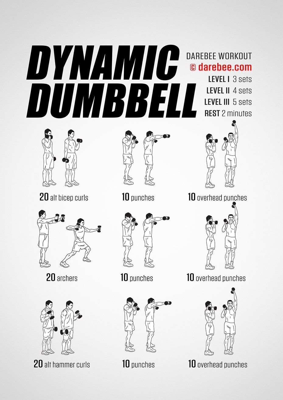 Dynamic Dumbbell Workout Nothing quite makes muscles and ...