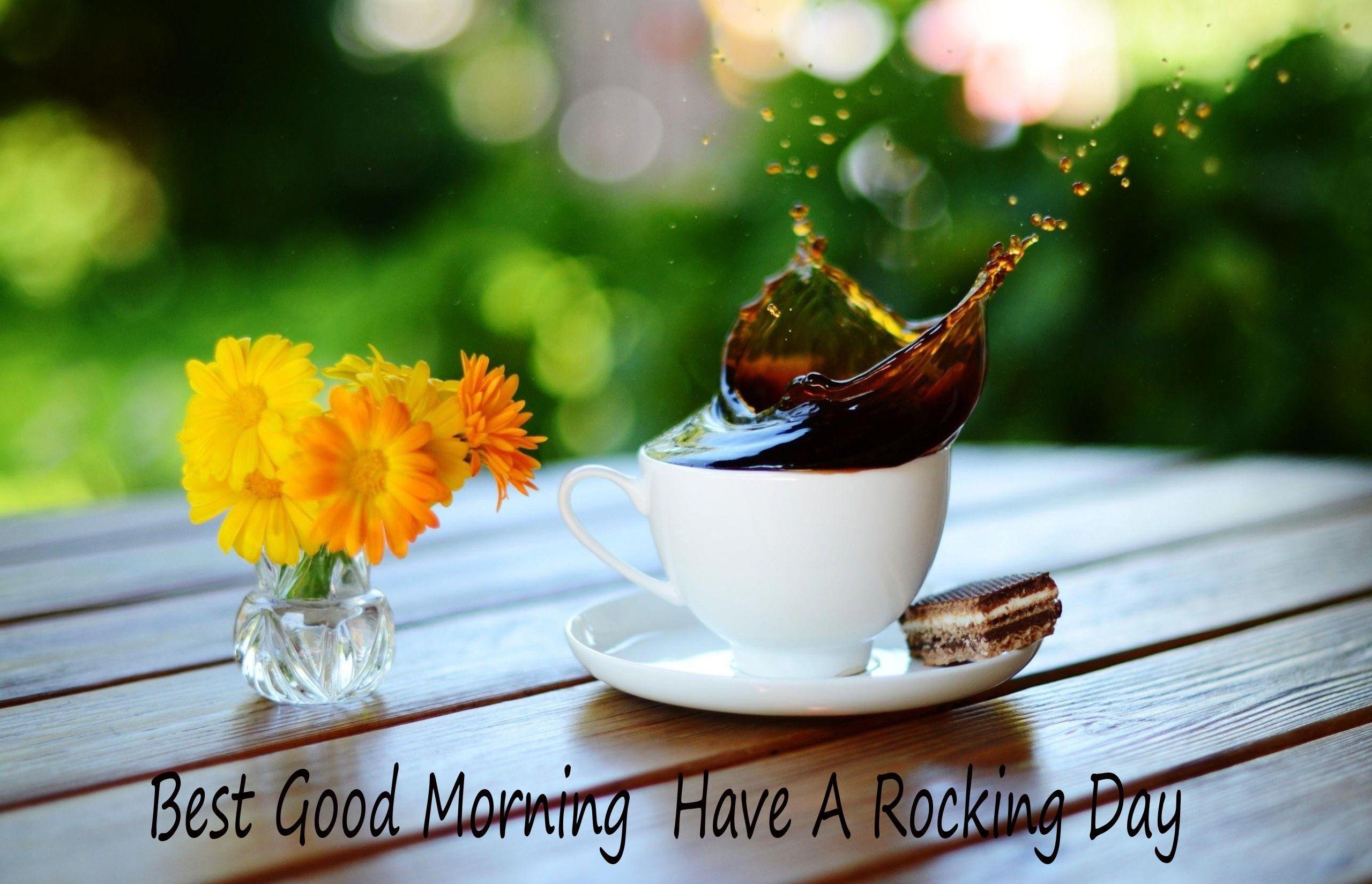 Wallpaper download morning - Good Morning Wallpaper Imgzz Images Blog