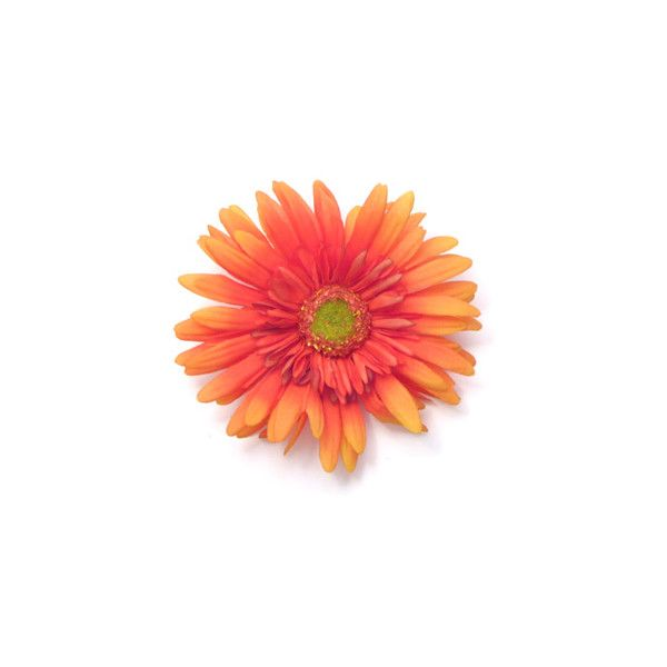 Fringe Daisy Silk Flower Pin ❤ liked on Polyvore featuring flowers, backgrounds, fillers, orange, flores, phrase, quotes, saying and text