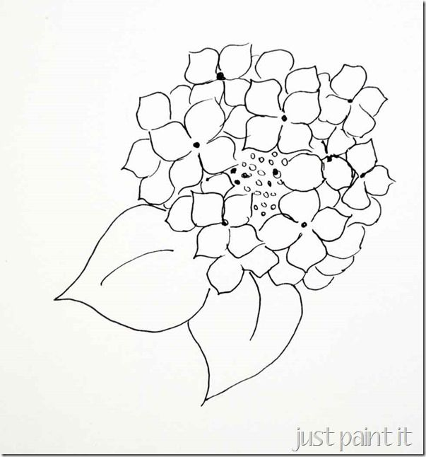 Hydrangea Flowers Drawing Sketch
