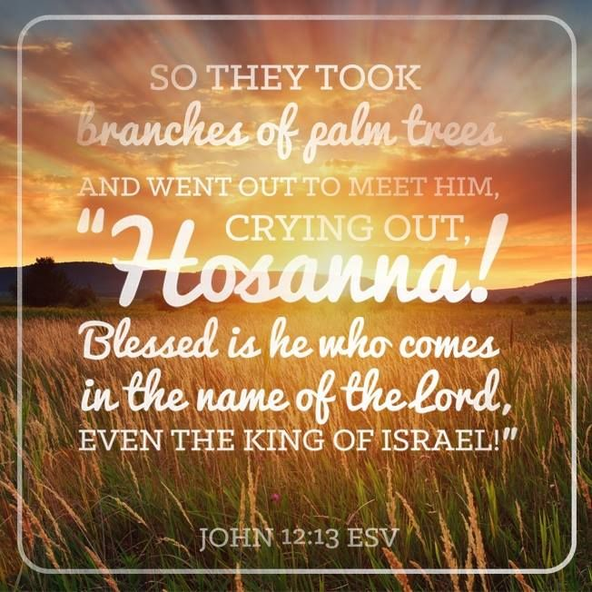 The next day the large crowd that had come to the feast heard that     The next day the large crowd that had come to the feast heard that Jesus  was coming to Jerusalem  So they took branches of palm trees and went out  to meet