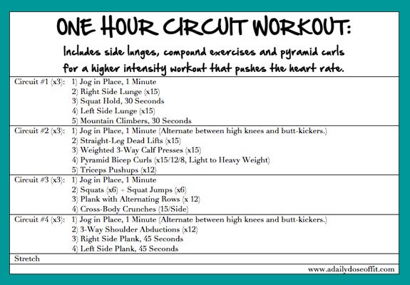 1 Hour Circuit Hour Workout Plan 1 Hour Workout Workout Plan For Beginners