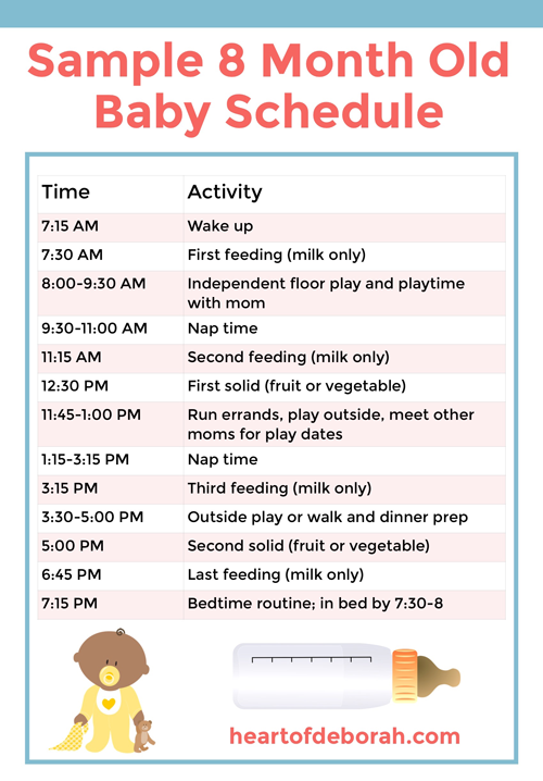 8 Month Schedule : month, schedule, Discover, Month, Schedule, Baby!, Samples, Included, Baby,, Months,