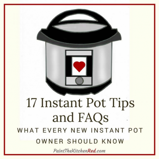 Photo of Hand-drawn image of Instant Pot and titile 17 Instant Pot Tips and FAQs What eve…