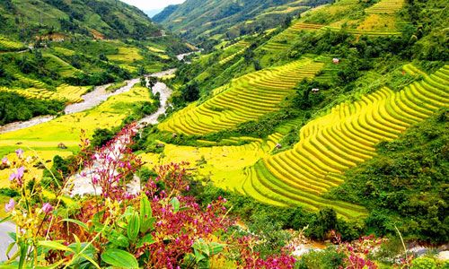 Sa Pa Terraces Best Attractive Places That You Can Visit In Vietnam