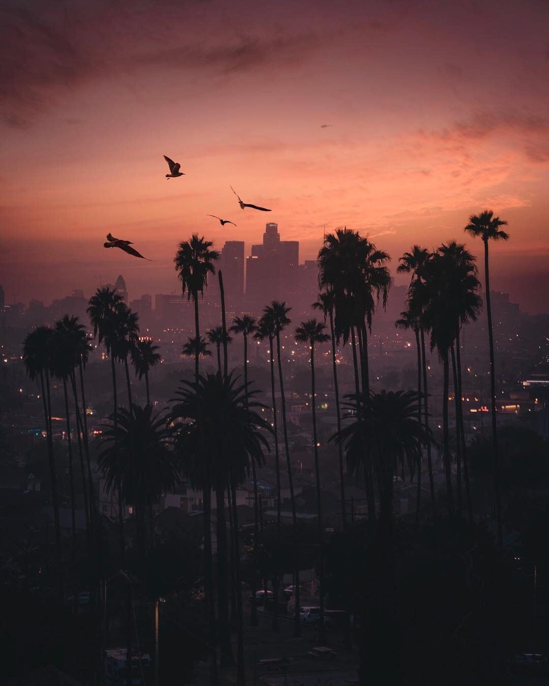 Placiies On Twitter City Iphone Wallpaper Sunset City Los Angeles Wallpaper