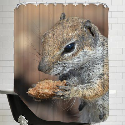 East Urban Home Squirrel Mammal Animal Single Shower Curtain