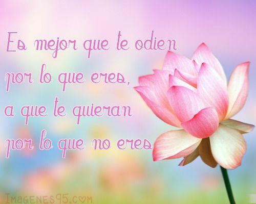 10 Frases Cortas De Amor Con Imagen Fraces Del Dia Del Amigo