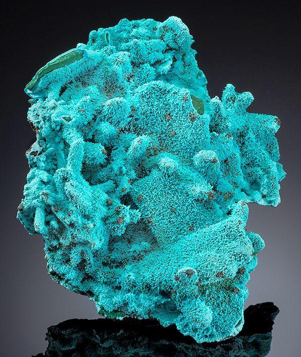 ╬Chrysocolla over Malachite ps after Azurite crystals ~ Luputo, Kakumba, Katanga Copper Crescent, Katanga (Shaba), Democratic Republic of Congo.