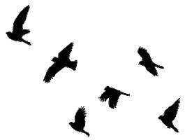 Wall Decals Flying Bird Tattoo Flying Bird Silhouette Bird Stencil