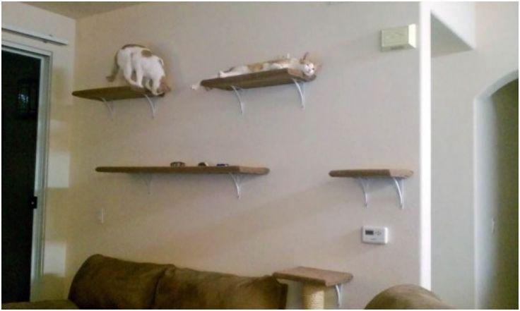 DIY wall-mounted cat tree