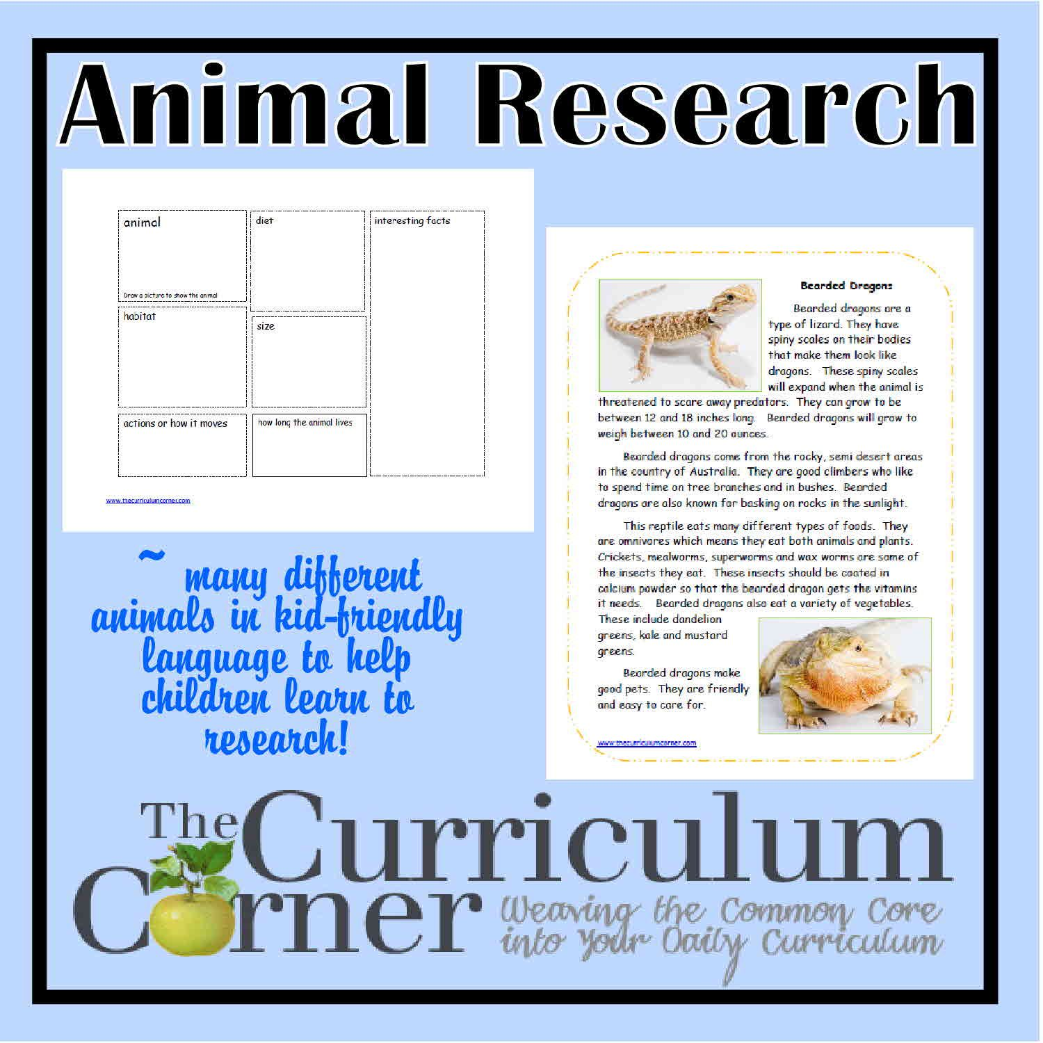 Animal Research Activities   Graphic organizers, Students and Activities