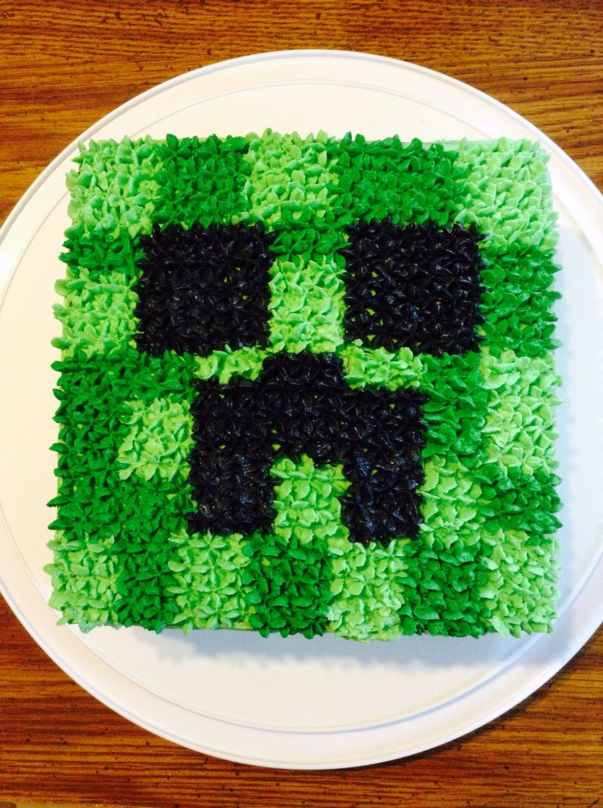 Marvelous Creeper Cake Minecraft Birthday Cake Minecraft Party Minecraft Funny Birthday Cards Online Inifofree Goldxyz