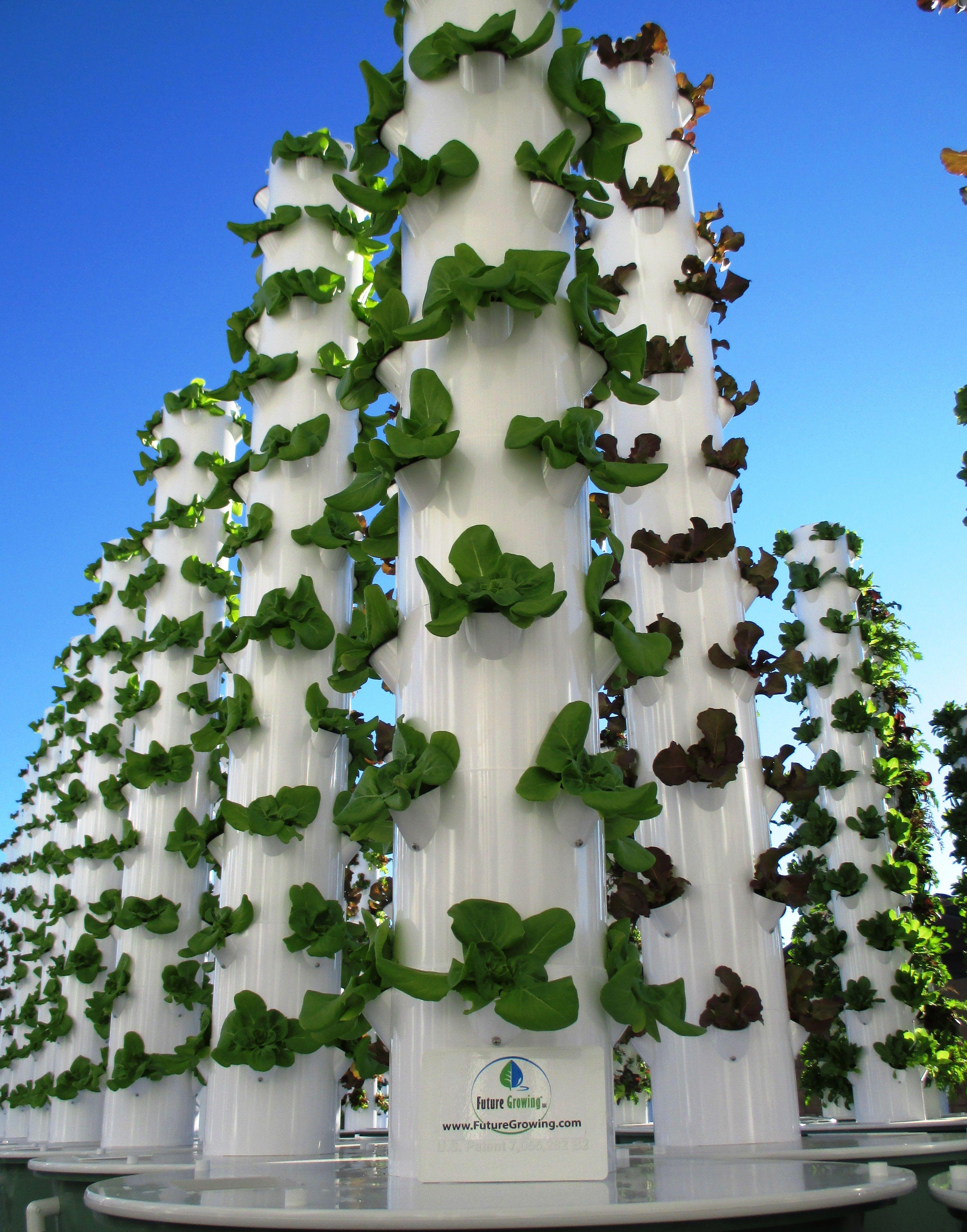 True Garden Tower Gardens AZ 01 | Hydroponics | Pinterest ...