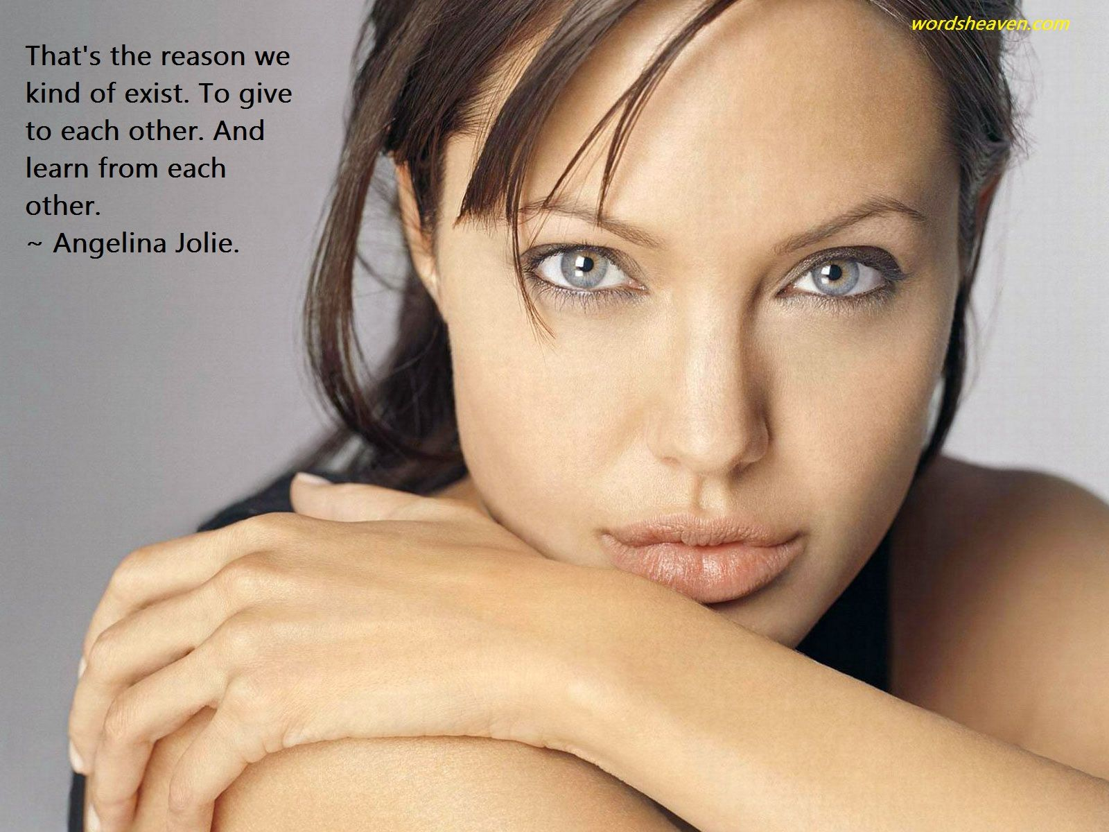 20 wise quotes by beautiful Angelina Jolie
