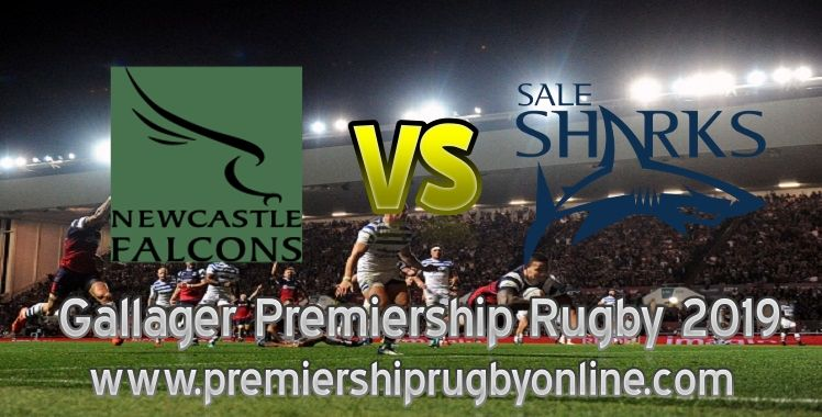 Live Falcons VS Sharks 2019 Rugby Rugby, Live rugby